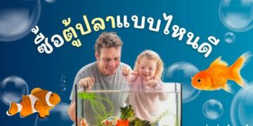 ตู้ปลา ซื้อแบบไหน ขนาดไหนดีที่สุด