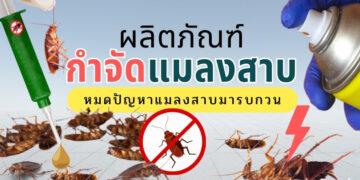 ผลิตภัณฑ์กำจัดแมลงสาบ ยี่ห้อไหนดีสุด ปี 2021