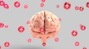 รีวิว อาหารเสริมบำรุงสมอง  ที่ดีที่สุด 2020