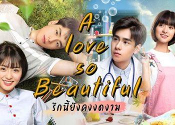 [tv] รีวิว ซีรีส์จีน 'A love so beautiful: รักนี้ยังงดงาม'