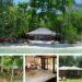 โครัล การ์เดน รีสอร์ต (Coral Garden Resort)