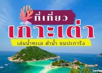 11 ที่เที่ยวเกาะเต่า เล่นน้ำทะเล ดำน้ำ ชมปะการัง