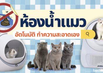 ห้องน้ำแมวอัตโนมัติ