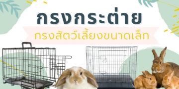 รีวิว กรงกระต่าย กรงสัตว์เลี้ยงขนาดเล็ก ยี่ห้อไหนดี ปี 2021
