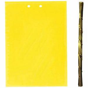 แผ่นกาวดักแมลง กาวดักแมลงวันแบบแผ่นสีเหลือง