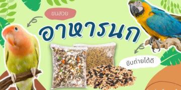 รีวิว อาหารนก คุณภาพดี สารอาหารครบถ้วน ยี่ห้อไหนดีที่สุด ปี 2021
