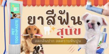 รีวิว ยาสีฟันสำหรับสุนัข ลดกลิ่นปาก ลดคราบพลัคและหินปูน