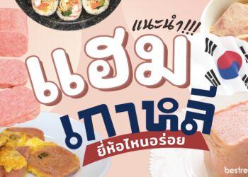 รีวิว แฮมเกาหลี ยี่ห้อไหนอร่อยที่สุด