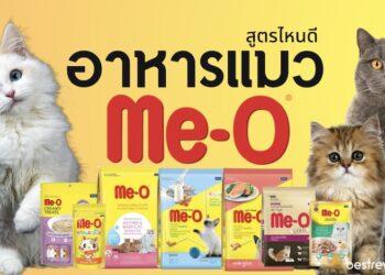 อาหารแมวมีโอ (Me-O) สูตรไหนดี อร่อยถูกใจเจ้าเหมียวที่สุด
