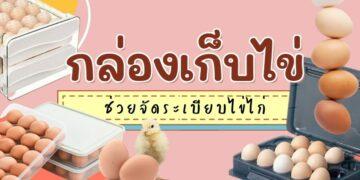 รีวิว กล่องเก็บไข่ ช่วยจัดระเบียบไข่ไก่ ยี่ห้อไหนดีที่สุด
